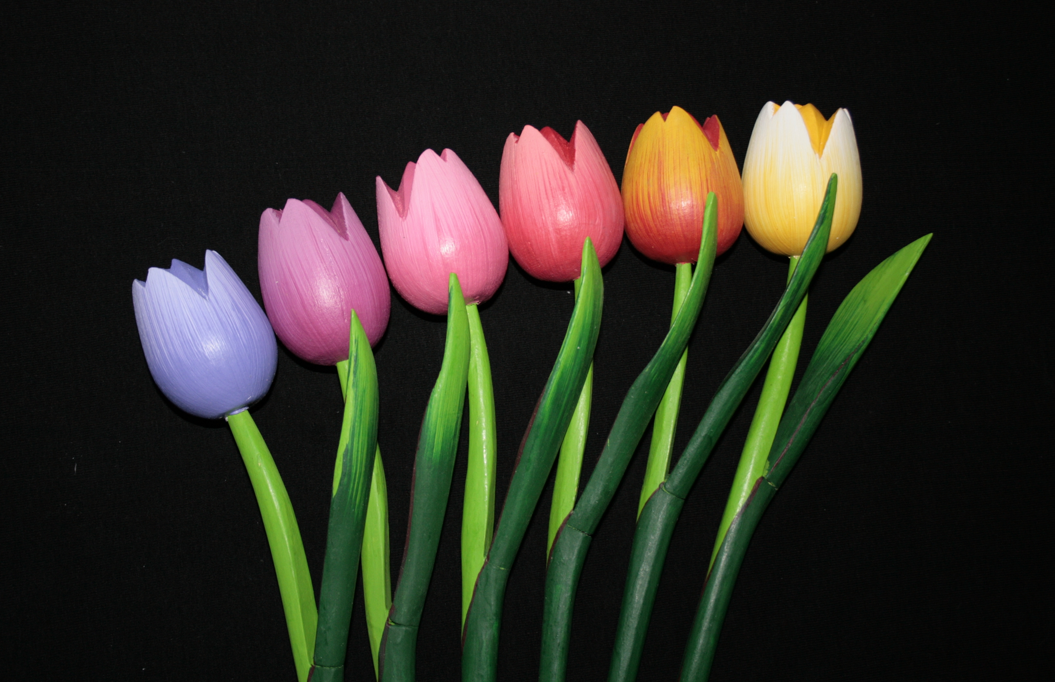 Pin tulpen on pinterest